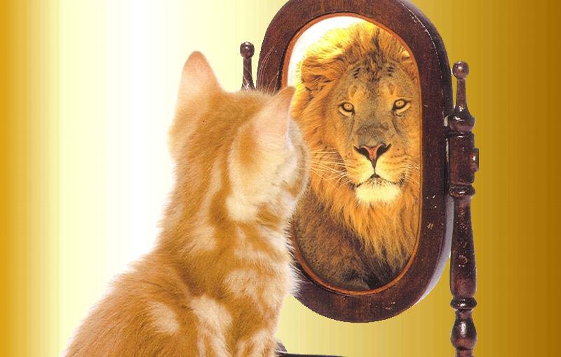 ¿Qué es la autoestima y cómo fortalecerla?